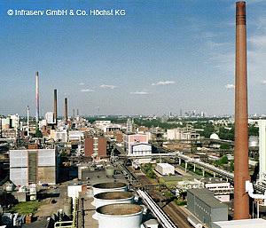 Ticona Tiger Projekt, Industriepark Höchst